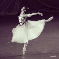 Claire Gandolfi